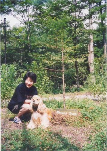 Mariko_Tree